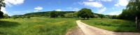 Wide shot of a path leading through green fields and large trees toward a distant hillside