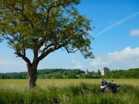Bike parked under tree, Chateau in background